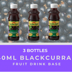 Sun Up 340ml Blackcurrant Fruit Drink Base Concentrate