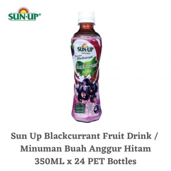 24Bottles SUN UP READY-TO-DRINK Blackcurrant Fruit Drink