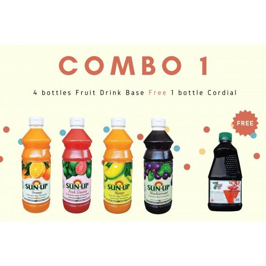 Combo 1 (4 bottles fruit drink base concentrate)