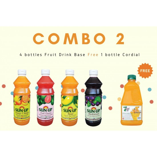 Combo 2 (4 bottles fruit drink base concentrate)