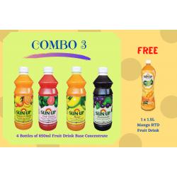 Combo 3 (4 bottles fruit drink base concentrate)