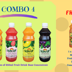 Combo 4 (4 bottles fruit drink base concentrate)