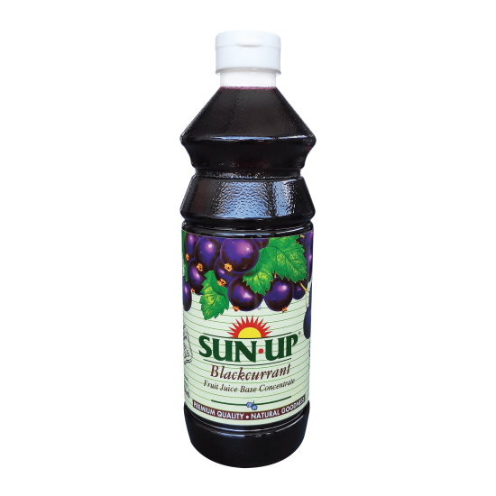 Sun Up 850ml Blackcurrant Fruit Drink Base Concentrate